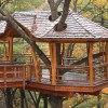 Adventure Tree Houses