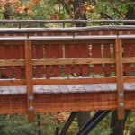 Tree house bridge handrailing