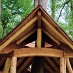 Unsawn log architecture natural tree hous