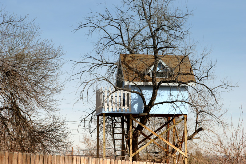 7_Tree_house_amongst_branches_hideaway.JPG